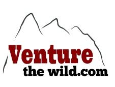 venture the wild